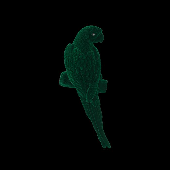 bold monkey Light My Fire wandlamp groen papegaai decolamp